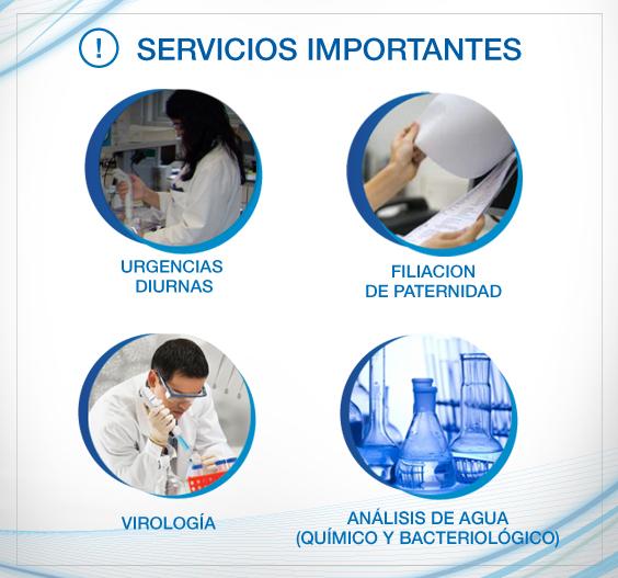 servicios importantes